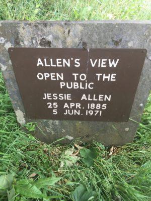 Allen's View
